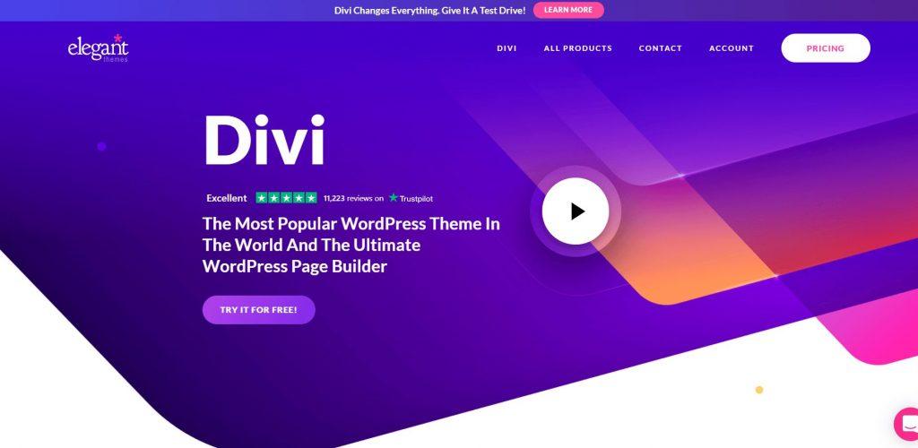 membuat website sekolah dengan visual builder dari divi