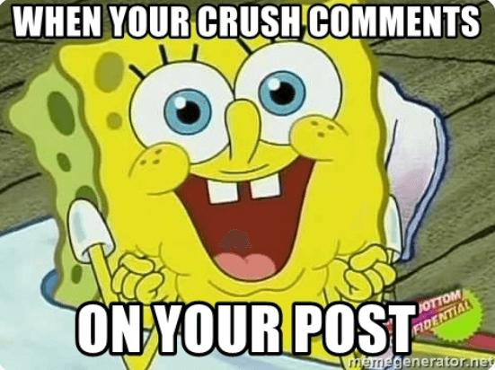 tanggapi komentar dari pengguna