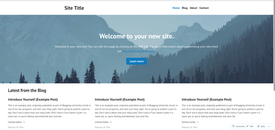 Website dengan hosting WordPress gratis telah siap