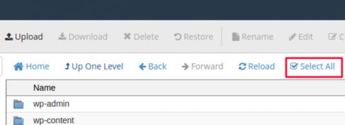 Klik select all untuk pindahkan file website