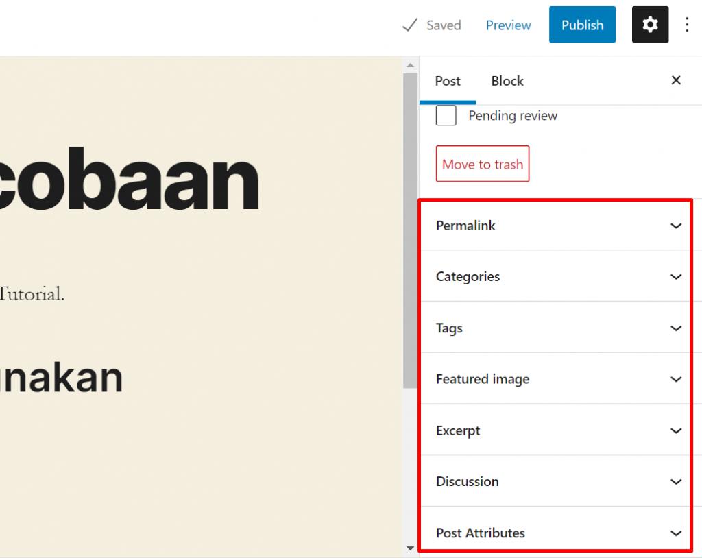 setting blog post sebelum publish