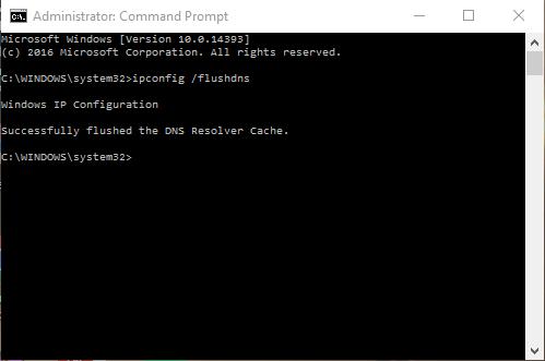 Hasil Flush DNS atau Ipconfig