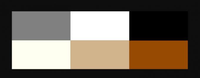 Contoh warna netral