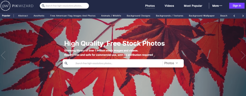 PikWizard adalah salah satu website gambar gratis