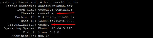 cara cek hostnamectl pada virtualisasi vps