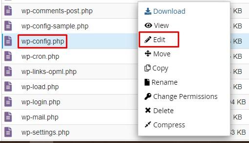 Edit file wp-config