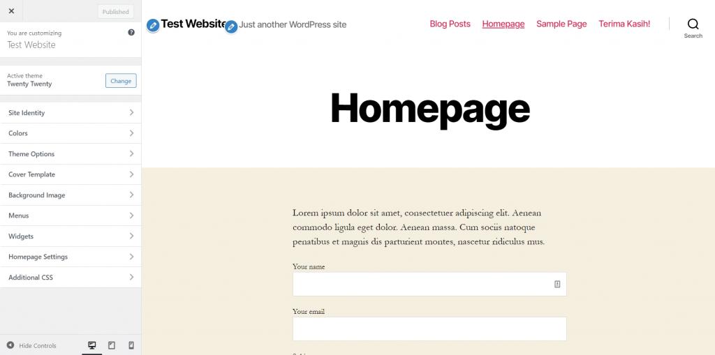 Tampilan menu customize WordPress