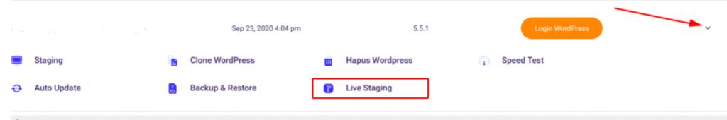 Menu live staging di WordPress Management