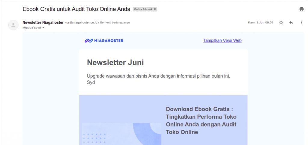 contoh newsletter dengan email domain